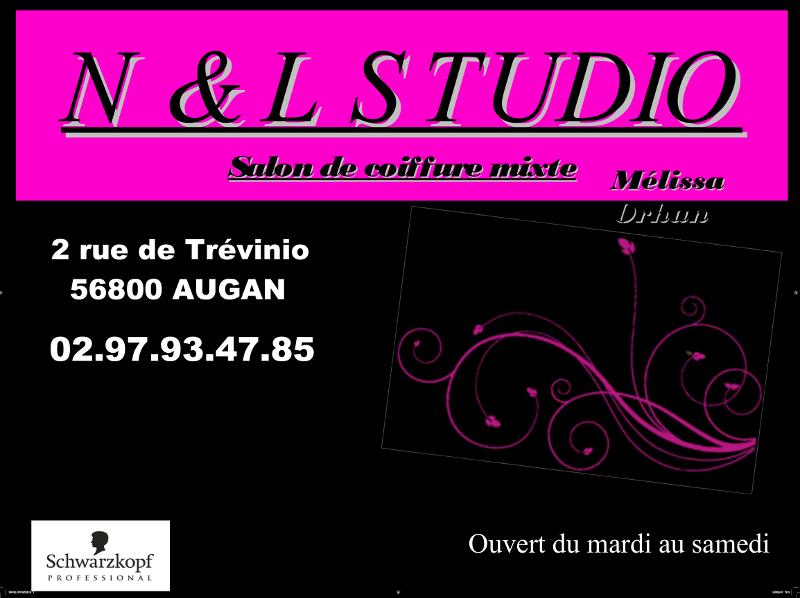 vignette nl-studio